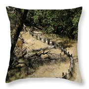 Castle Rock Sp Throw Pillow