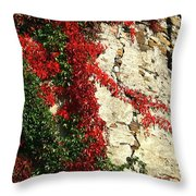 Castle Vines Throw Pillow