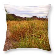 Castolon - A Ghost Town 3 Throw Pillow