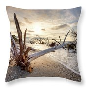 Casualties Of Time Throw Pillow