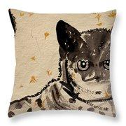 Cat 3 Throw Pillow