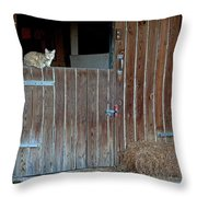 Cat And Barn Throw Pillow