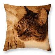 Cat And Clock Throw Pillow