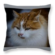 Cat And Snowflakes Throw Pillow