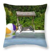 Cat At The Beach Throw Pillow