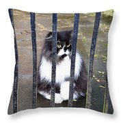 Cat At The Gate Throw Pillow