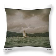 Cat Before The Storm Throw Pillow