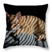 Cat Camouflage Throw Pillow