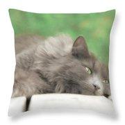 Cat Chillax Throw Pillow