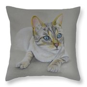 cat drawing - Jackson Throw Pillow