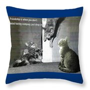 Cat Dropping In Throw Pillow