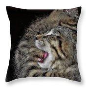 Cat Fight Throw Pillow