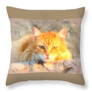This Cat Has Been Waiting A Long Time For The Mouse  Throw Pillow