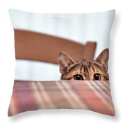 Cat Hiding Under The Table Throw Pillow