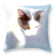 When You Are A Cat You Have A Different Perspective   Throw Pillow