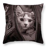 Cat In A Bag Throw Pillow