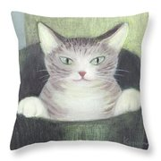 Cat In A Bucket Throw Pillow