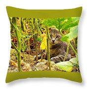 Cat In Field Throw Pillow