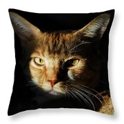 Cat In Shadow Throw Pillow