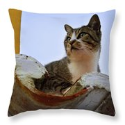 Cat In The Roof Throw Pillow