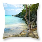 Cat Island Cove Throw Pillow
