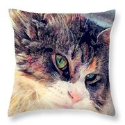 Cat Jasper Throw Pillow