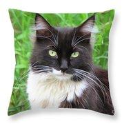 Cat Lawrence Throw Pillow
