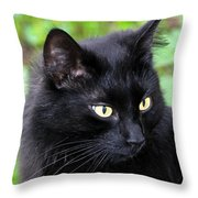 Cat Marquis Throw Pillow