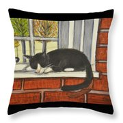 Cat Nap In Window Throw Pillow
