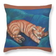 Cat Napping Throw Pillow