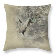 Cat, Nikita Il Gatto. Throw Pillow