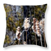 Cat O Eleven Tails Throw Pillow