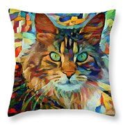 Cat On Colors Throw Pillow