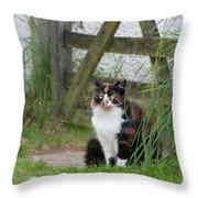 Farm Cat On Duty Throw Pillow