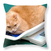 Cat On Scale. Throw Pillow