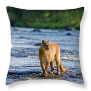 Cat On The River Throw Pillow
