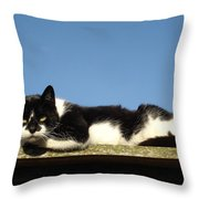 Cat On The Roof Throw Pillow