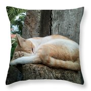 Cat On The Tree Throw Pillow
