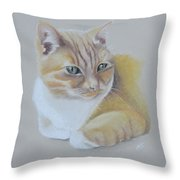 cat portrait - Astra Throw Pillow