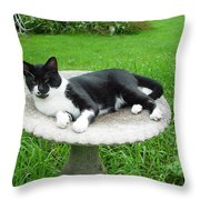 Cat Relaxing In A Birdbath In The Summertime  Throw Pillow