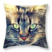 Cat Simba Throw Pillow