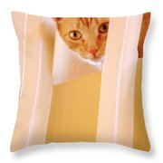 Cat Spy Throw Pillow