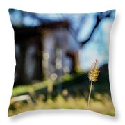 Cat Tail Throw Pillow