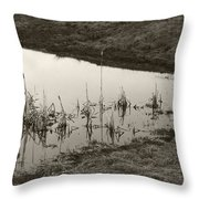 Cat Tail Reflections Throw Pillow