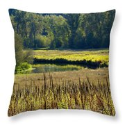 Cat Tails In The Sun Throw Pillow