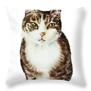 Cat Watercolor Illustration Throw Pillow