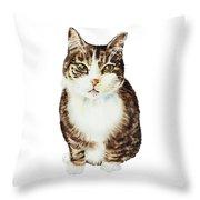 Cat Watercolor Illustration Throw Pillow