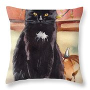 Cat With The Pumpkin Throw Pillow
