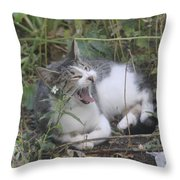 Cat Yawning In The Garden Throw Pillow