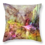 Cataleptize Denuded  Id 16098-023938-04261 Throw Pillow